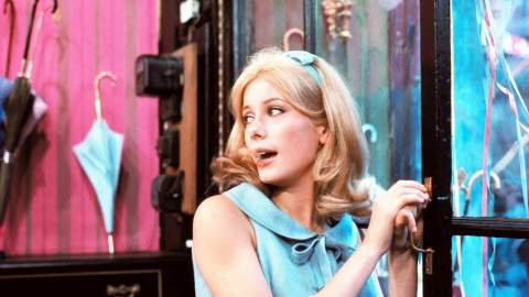 Image for Singin' in the Rain + The Umbrellas of Cherbourg